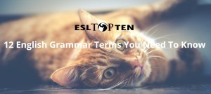 cat for 12 grammar terms you need to know
