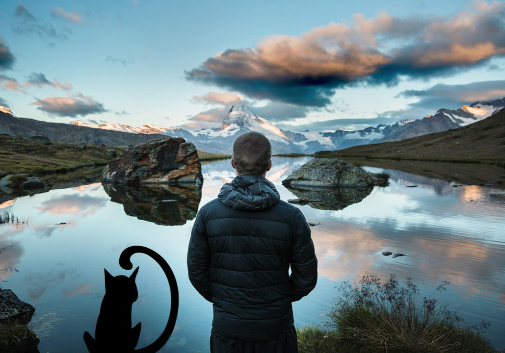 Young man and cat look at mountain